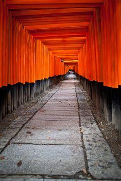Fushimi Inari-taisha Torii by Brandon Hoover on 500px