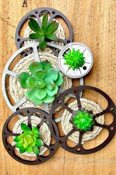 8MM Movie Reels DIY Idea Succulent Wall Decor #succulentlove #succulentsplants #succulents #recycledcrafts  #sisal