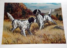 Pointer hunting dogs antique vintage dec Art DOG SETTERS 1903- Arthur Wardle