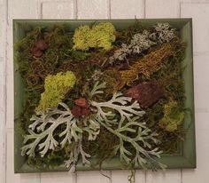 Woodland Moss Wall Art Wall Hanging Original by sycamoregrove