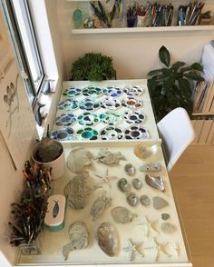 My main work desk, which doubles as a display case for my treasures and palettes. This month it's sea treasures 😊