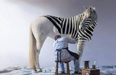 Where zebras come from