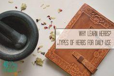 5 Reasons to Learn Herbs