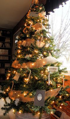 I hope you spent a wonderful Thanksgiving with your families! I also put up all my Christmas decorations on Friday. Cool Christmas Trees, Burlap Christmas, Outdoor Christmas Decorations, Christmas Love, Country Christmas, Xmas Tree, Christmas Ideas, Christmas Wishes, Christmas Pictures