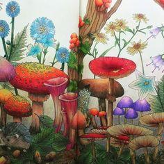 好不容易把這張跨頁的畫好了!有看到一隻小小的刺蝟嗎? 書名:Rhapsody in the Forest – Coloring Book  作者:江種 鹿乃子 #rhapsodyintheforest #kanokoegusa #adultcoloringbook #coloring #coloringbook #coloringpencils #coloringbookforadults