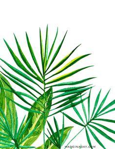 Palm-Leaf-.jpg (650×841)