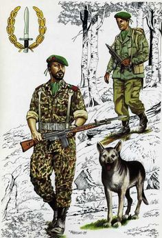 Special Ops, Special Forces, Military Art, Military History, Army Post, Falklands War, Modern Warfare, Cold War, Mammals