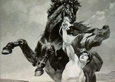 Bucephalus and Alexander fall