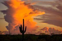 ***Thunderheads at sunset in the desert (Arizona) by Saija Lehtonen on 500px