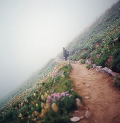 -by manyfires, via Flickr-  Go hiking on Mt. Rainier.