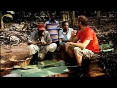 FAIR TRADE in Ghana - plantage - cacaobonen Ghana, Fair Trade, How To Make, Atelier
