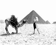 Richard Avedon - Fashion Photographer - Dovima, dress by Claire McCardell, Great Pyramid of Giza, Egypt, January 1951