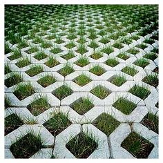 Pattern of grass-filled open pavers