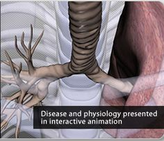 11 Free Tools to Teach Human Anatomy in 3D ~ Educational Technology and Mobile Learning