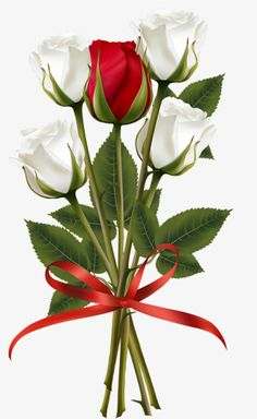 White And Red Rose Bouquet Transparent Clip Art Image - Flower Bouquet Rose Red Clip Art PNG - wedding cake, artificial flower, bride, bud, cut flowers Wallpaper Nature Flowers, Rose Flower Wallpaper, Beautiful Flowers Wallpapers, Beautiful Rose Flowers, Flower Backgrounds, Cut Flowers, Red And White Roses, Red Roses, Iphone Wallpaper Video