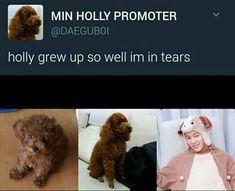 Yoongi is the best dad ever TuT Bts Bangtan Boy, Bts Boys, Bts Jimin, Seokjin, Namjoon, Taehyung, Min Holly, Bts Tweet, Yoongi