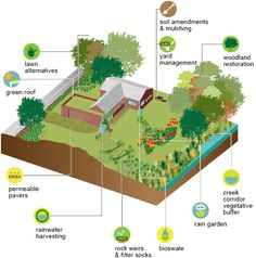 botanic garden RainScaping Guide: Learn how to incorporate sustainable landscaping that reduces stormwater runoff and improves local water quality! Water From Air, Sun And Water, Garden Shrubs, Garden Soil, Missouri Botanical Garden, Botanical Gardens, Rainwater Harvesting, Water Retention, Water Quality