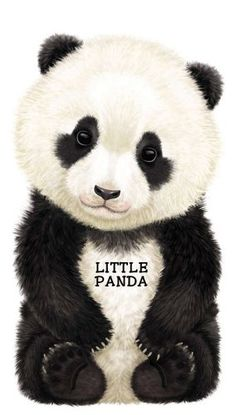 Little Panda (Look at Me Books (Barron's)) by L. Rigo http://smile.amazon.com/dp/0764163396/ref=cm_sw_r_pi_dp_7JFlxb0RVNG6B