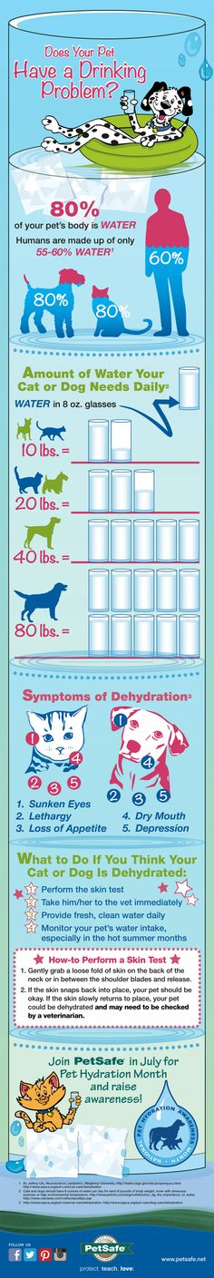Drinking-Infographic-WebRes