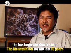 "Jigmet Dadul, also popular as ""Jigmet Snow Leopard"" in Ladakh, has been working to save the elusive mountain cat since past 16 years. He tells us why it is important to conserve the ""Pride of the Himalayas"".  #SnowLeopard"