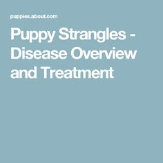Puppy Strangles - Disease Overview and Treatment
