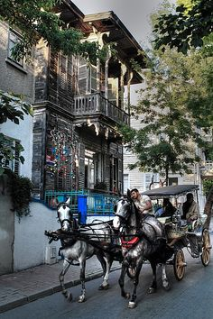 Horse cart rides in Büyükada ...   Photo by Engin Erol