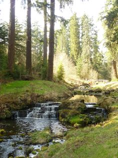 Been here... beautuful (Cragside Near Newcastle England)