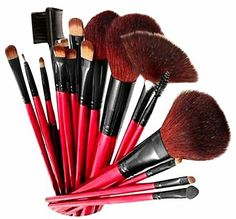 SHANY Shany Professional Cosmetic Brush Set with Pouch (Color May Vary), 12 ct