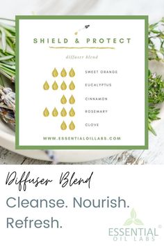 'Shield & Protect' Diffuser Blend by Essential Oil Labs using sweet orange essential oil, eucalyptus essential oil, cinnamon essential oil, rosemary essential oil and clove essential oil. Deodorize stale air and boost spirits! Essential Oils Sinus, Hangover Essential Oils, Clove Essential Oil, Cinnamon Essential Oil, Essential Oils Cleaning, Essential Oil Diffuser Blends, Eucalyptus Essential Oil, Therapeutic Grade Essential Oils, Essential Oil Uses