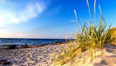 Baltic shore #baltic