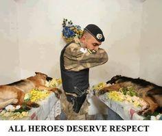 Es una foto triste pero me encanta ver que respetan y honraran a los animalitos