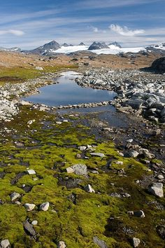 Jotunheimen National Park, Norway Source by Beautiful Places To Visit, Places To See, Jotunheimen National Park, Norway Beach, Travel Around The World, Around The Worlds, Beautiful Norway, Paraiso Natural, Scandinavian Countries