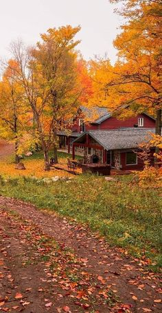 Autumn Photography, Landscape Photography, Autumn Scenes, Autumn Aesthetic, Fall Wallpaper, Photos Voyages, Cabins And Cottages, Cabins In The Woods, Amazing Nature