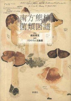ワタリウム美術館編集・萩原博光解説 : 南方熊楠菌類図譜