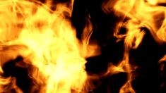 This Dynamic gold raging fire photography&video background video material for video producer is provided by Victoriasmoon Backdrop Fire Photography, Video Background, Rage, Backdrops, Nature, Gold, Naturaleza, Backgrounds, Nature Illustration