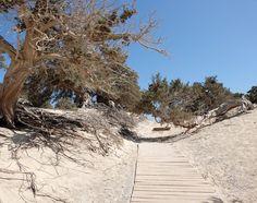 Τα μυστικά εξωτικά νησιά της Κρήτης.