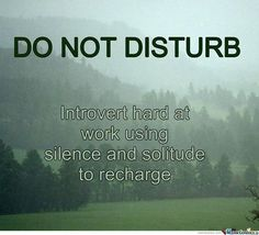 Introvert - do not disturb Introvert Love, Intj And Infj, Introvert Quotes, Introvert Problems, Intp, Highly Sensitive Person, Infj Personality, Solitude, Thoughts