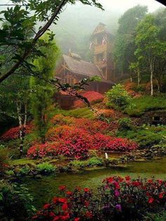 fairytale place  Wow, I'd love to live here.I want to go see this place one day.Please check out my website thanks. www.photopix.co.nz