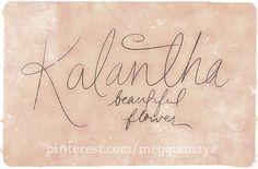 "Baby girl's name Kalantha. ""Ka-LAN-tha"" Beautiful flower. Also spelled Calantha.        Hand-drawn name art by Meg at pinterest.com/meggiemaye."