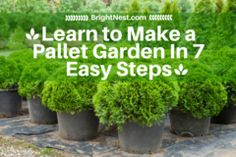Cropped_learn_to_make_a_pallet_garden_in_7_easy_steps