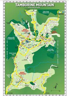 tamborine mountain walking track