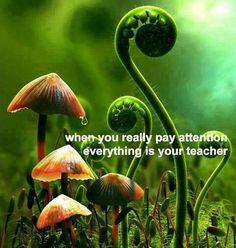 Thoughtful