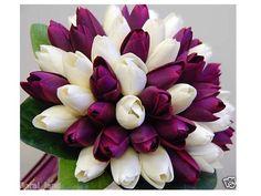buque de tulipas - Pesquisa Google