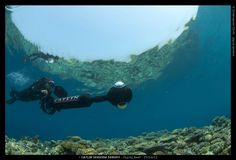 #fb #in Empowering every diver that loves exploring and photography, with a simplified Catlin's Cam. Hopefully make Humanity aware, thru GoogleSea, that here on Earth & Down&Under, there's little known Parallel Universe that we are decimating every other day.