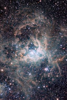 """Magellanic Cloud Survey view of the Tarantula Nebula 