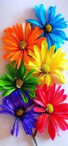 Color ~ Rainbow ~ Spectrum…