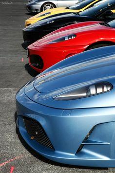Ferrari-all lined up.