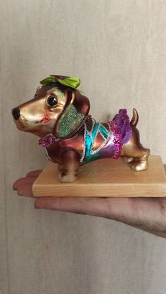 Dachshunds, Doggies, Costume Contest, Weiner Dogs, Scooby Doo, German, Objects, Costumes, Facebook