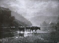 Die Kunst in der Photographie : 1908 Photographer: Léonard Misonne Title: À L'eau