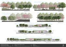 Landscape architecture sections - Urban park